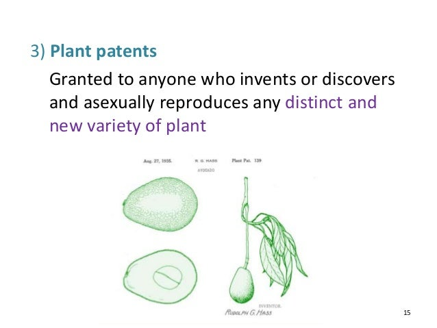 example of patent in the world